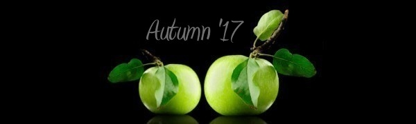 Web Design, Graphic Design, Web Hosting. Marketing - Autumn 2017 Version - Hagerstown, Maryland - Green Apples