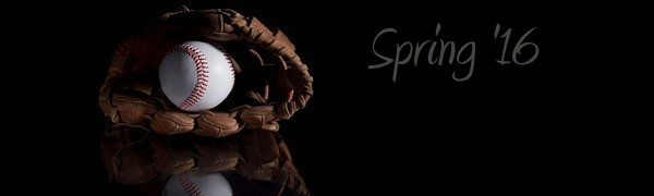 Web Design, Graphic Design, Web Hosting - Spring 2016 Version - Hagerstown, Maryland - Baseball