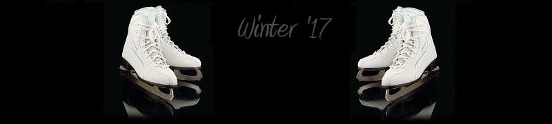 Web Design, Graphic Design, Web Hosting, Marketing - Winter 2015 Version - Hagerstown, Maryland - Ice Skates