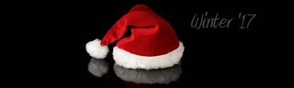 Web Design, Graphic Design, Web Hosting. Marketing - Winter 2015 Version - Hagerstown, Maryland - Santa Hat