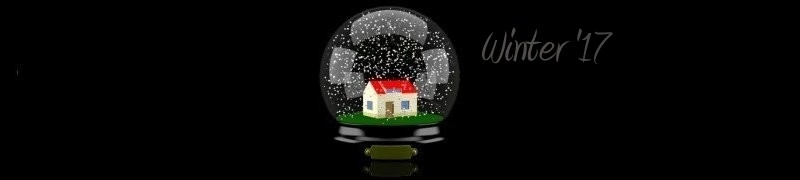 Web Design, Graphic Design, Web Hosting, Marketing - Winter 2017 Version - Hagerstown, Maryland - Snowglobe
